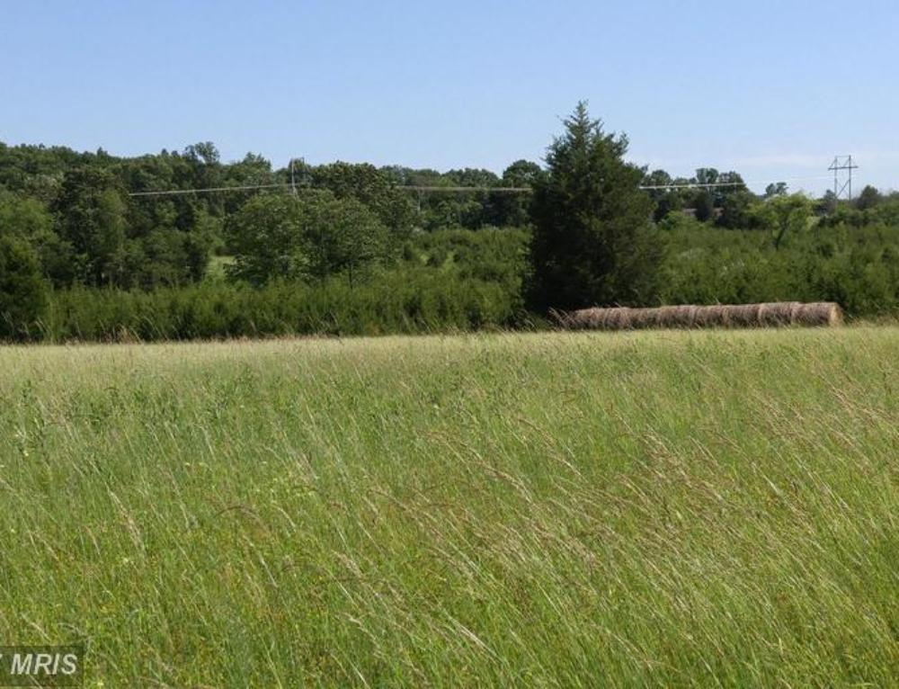 Prime Land – Bunker Hill, WV